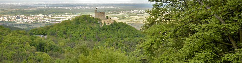 Blick vom Pfälzerwald aufs Hambacher Schloss in Richtung Rheinebene