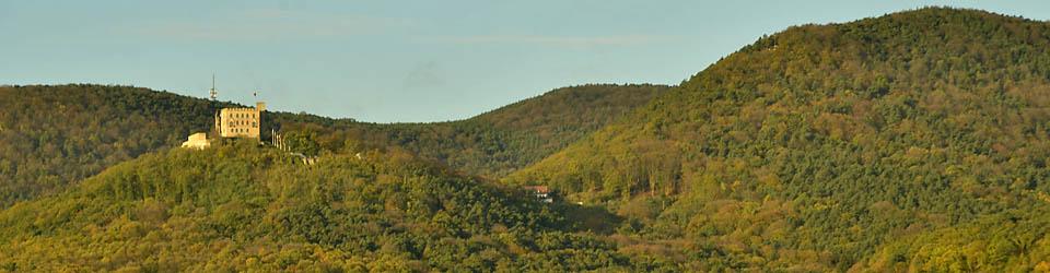 Blick auf Pfälzerwald und Hambacher Schloss, die Wiege der deutschen Demokratie